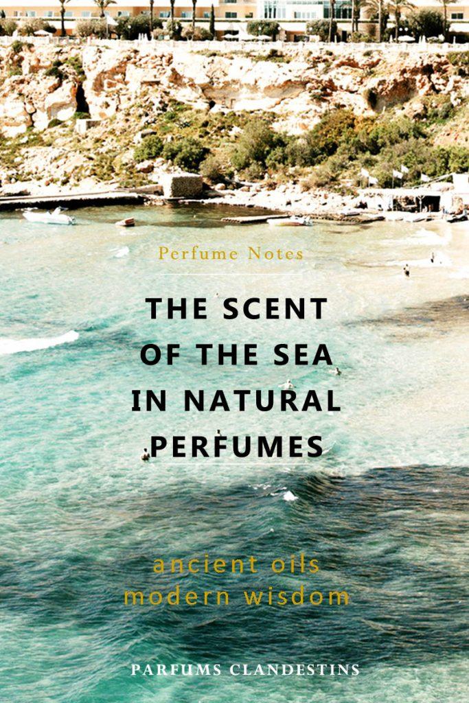 marine note in perfume - Parfums Clandestins