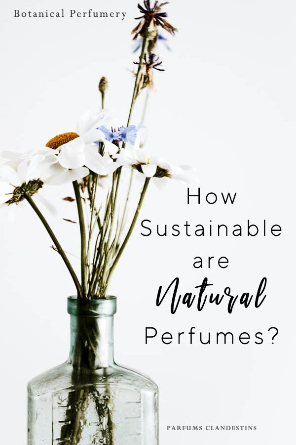 Do sustainable natural perfumes exist?