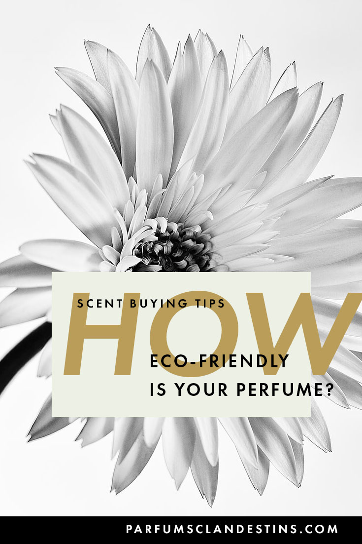 Is your perfume sustainable and eco-friendly