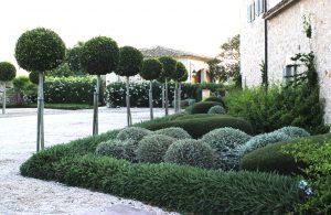 Mediterranean perfumes - Cal Reiet gardens Mallorca