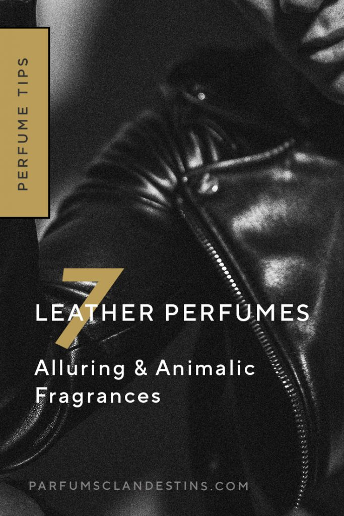 Explore leather perfume notes